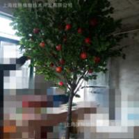 上海仿真苹果树厂家直销 仿真苹果树生产厂家 上海仿真苹果树供应商 上海仿真苹果树专卖店