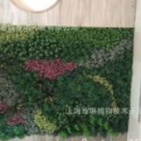上海绿化墙厂家直销 上海绿化墙供应商 绿化墙厂家 上海绿化墙制造商