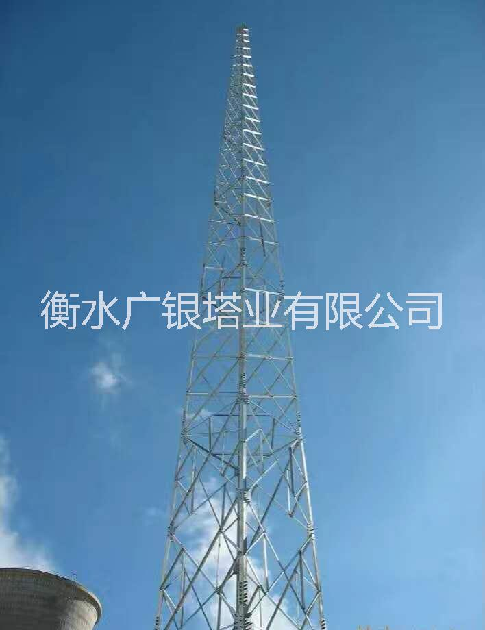避雷塔供应商报价-钢结构 塔式避雷针 不锈钢工艺(装饰)建筑物防雷