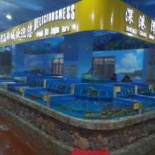 杭州水族馆玻璃鱼缸定制