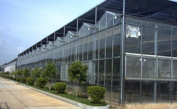 山东供应智能玻璃温室建设造价 智能温室骨架材料
