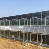 【青州玻璃连栋温室】_青州玻璃连栋温室图片_潍坊建达温室材料有限公司玻璃连栋安装