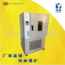 300度热老化箱橡胶换气老化箱耐高温老化箱电子老化箱实验室用老化箱