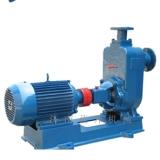 山东蓝升机械有限公司专业-供应污水泵,高品质、低价格、性价比高的水泵生产厂家