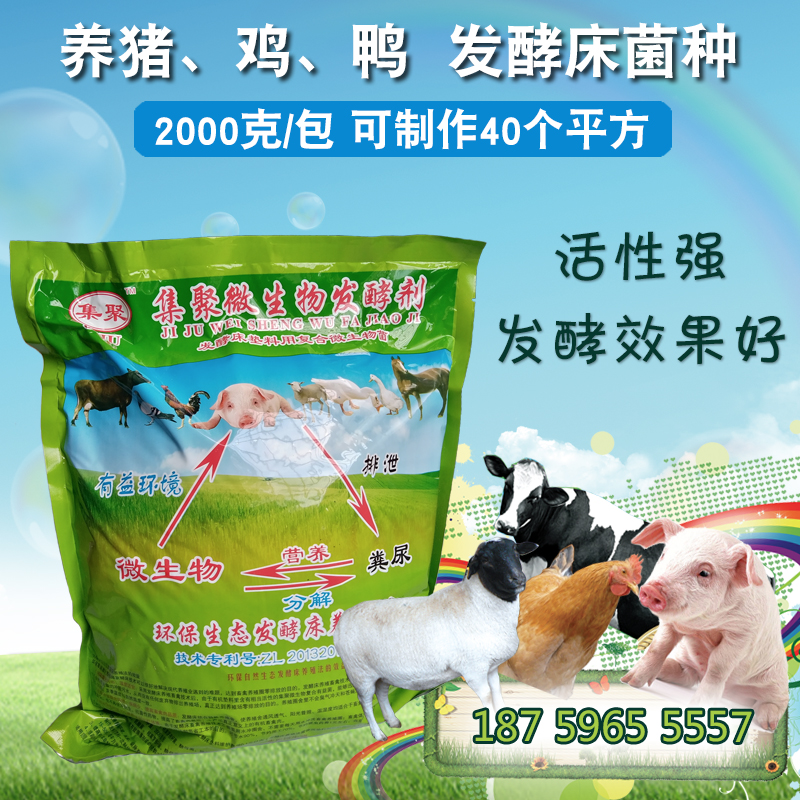 养猪发酵床菌种购买 干撒式发酵床菌种 EM菌种