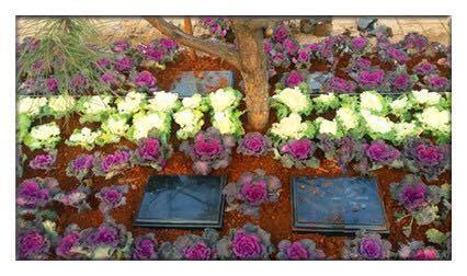 洛阳公墓经济实用型双穴墓位 洛阳公墓哪个位置好 洛阳公墓哪个风 水好