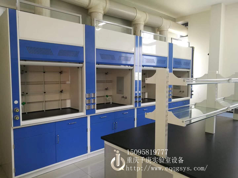 重庆实验室PP通风柜/全钢通风柜