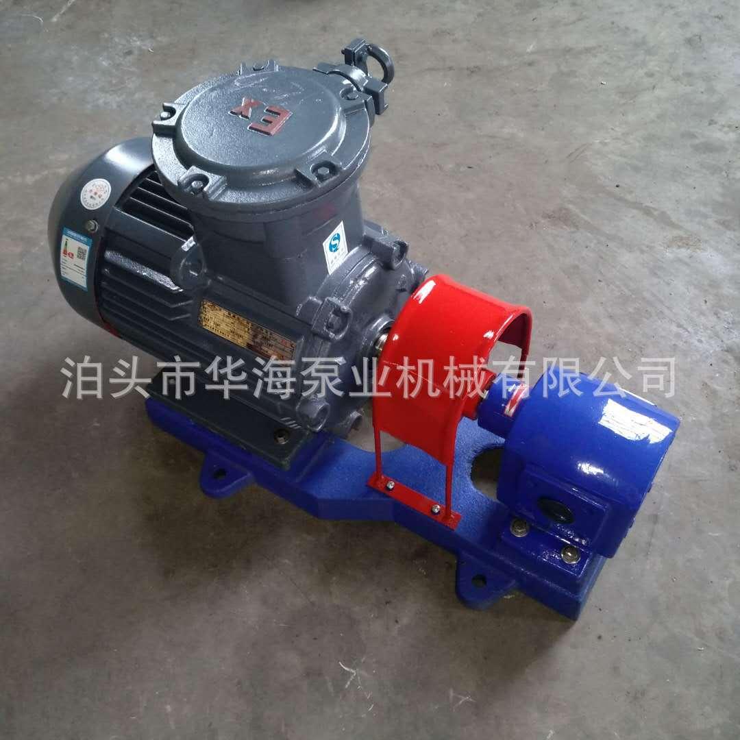 点火泵DHB5/3.6增压泵增压燃油泵高压力可调压齿轮泵
