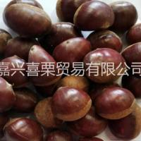 福建高山板栗多少钱 新鲜板栗批发 糖炒栗子店专供优良新鲜生板栗