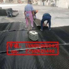 滨州车库底板/顶板排水板↑济南塑料排水板批发