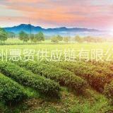 广州进口茶叶代理报关公司 广州进口茶叶代理报关贸易公司
