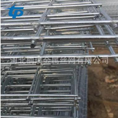 出售铁丝固定苗床网片 电焊牢固重物方格货架网片 质量保证 供应优质苗床网片