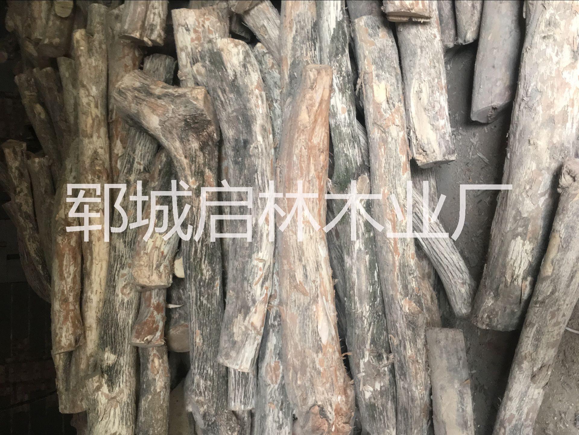 大批量出售用于工艺品/木雕的优质旱黄杨水黄杨批发/黄杨木原木价格