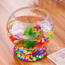 供應透明臺式玻璃花瓶 綠蘿花器  桌面擺件 帶底水培加厚花瓶 花瓶哪家好 玻璃瓶圖片