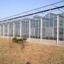 外贸出口加拿大玻璃温室大棚骨架材料配件加工厂家实体材料应有尽有批发