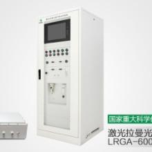激光拉曼光谱气体分析仪LRGA-6000