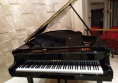 搬钢琴 珠海搬钢琴服务 珠海搬钢琴电话 珠海搬钢琴价格 珠海三角钢琴搬运 珠海搬钢琴