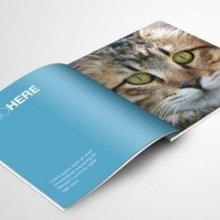 佛山市设计制作画册.产品画册设计,排版,提升企业品质为客户价格电议品质保证批发