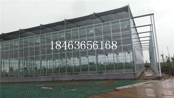 玻璃温室价格 甘肃玻璃温室 甘肃温室价格 玻璃温室大棚 智能温室大棚 智能温室价格 智能玻璃大棚