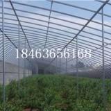 日光温室,日光温室价格,土墙温室大棚,土墙大棚价格,蔬菜温室大棚 日光温室 日光温室大棚