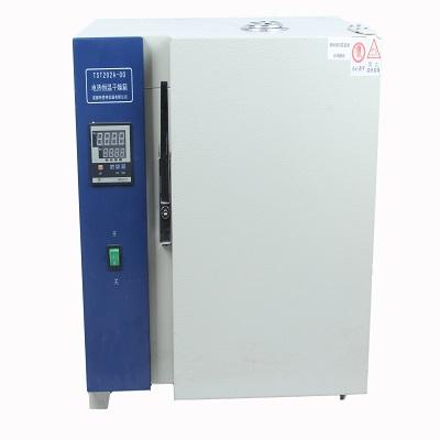 厂家直销电热鼓风干燥箱 电热鼓风干燥箱成都特思特
