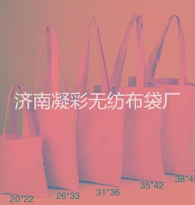 济南帆布袋定做厂家直销图片/济南帆布袋定做厂家直销样板图 (2)