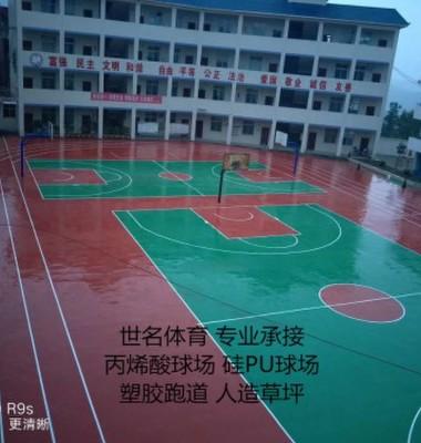 丙烯酸篮球场操场地坪漆图片/丙烯酸篮球场操场地坪漆样板图 (2)