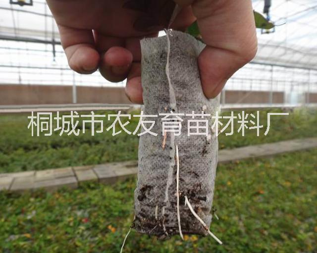 环保无纺布育苗袋