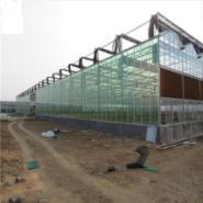 中国向意大利做出口温室大棚材料图片