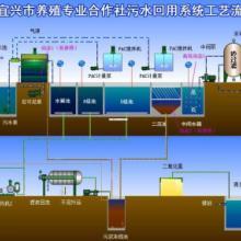 专业养殖废水处理设备