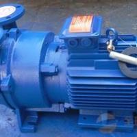 2BV水环真空泵 【淄博市隆光真空设备】 高品质真空设备