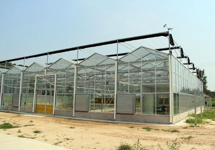 玻璃温室 立体玻璃温室 蔬菜玻璃温室