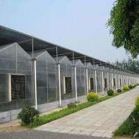 阳光板温室 阳光温室