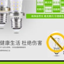 四川 无影灯 玉米灯泡 厂家批发价格 节能LED照明光源批发批发