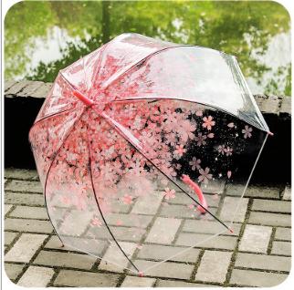 供应唯美樱花透明雨伞 长柄儿童萌动漫雨伞 雨伞女 可爱清新女神伞 雨伞 雨伞供应商