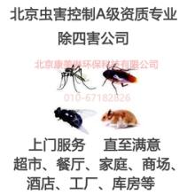 北京除四害消杀灭蟑螂灭鼠除蚊蝇除老鼠灭蚊灭蝇诱捕飞虫灯批发
