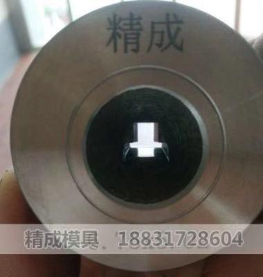 聚晶模具图片/聚晶模具样板图 (1)