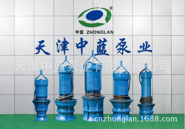 QZ(H)B轴流泵混流泵生产厂家