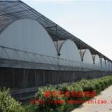 鑫華喲~薄膜溫室【塑料薄膜溫室】【薄膜溫室報價】
