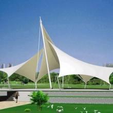 景观张拉膜 海边膜结构景观设计 东莞市内膜结构公司 低价格 质量保证图片