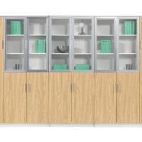 江西厂家供应文件柜木质资料柜铁皮柜