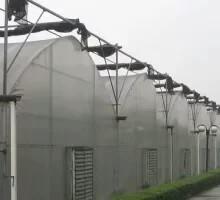 供应河北种植日光温室15081063931 河北种植日光温室建设