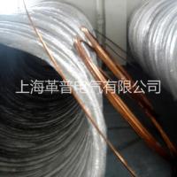 上海革普供应镀铜圆钢防雷接地材料