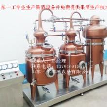 葡萄酒酿酒设备