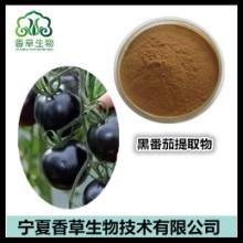 黑番茄提取物供应商/厂家供应/生产商