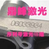 惠州沥林五金激光打标机|序列号激光雕刻设备