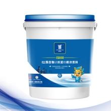 K11聚合物(J)水泥(S)防水浆料(CQ108)