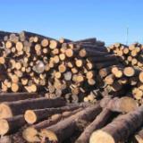原木 红木 家具 石料进口清关  原木进口清关  石料进口清关  红木进口清关  家具进口清关
