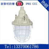 供应新黎明BCD-200W系列防爆照明灯  BCD-200W隔爆型防爆灯