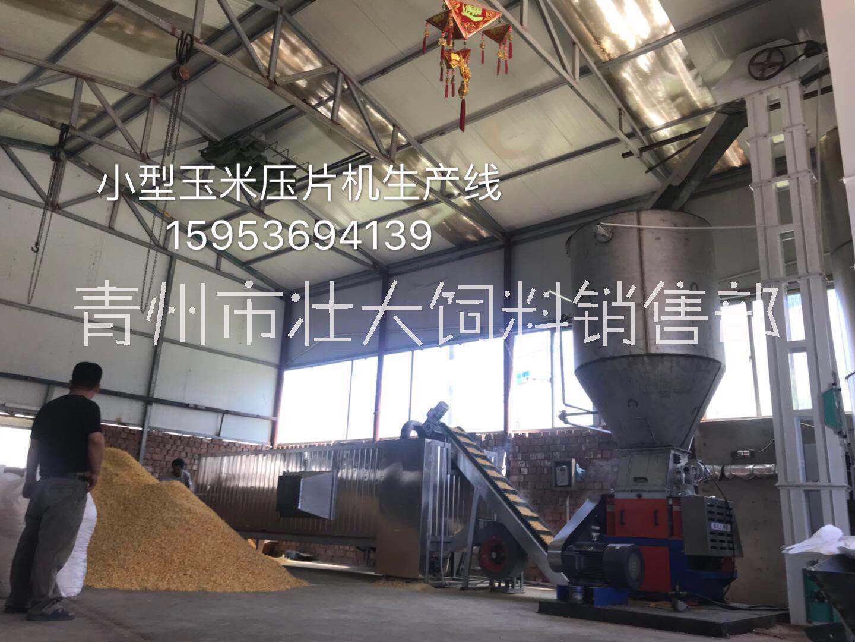 供应山东中小型玉米压片机-专业厂家制造